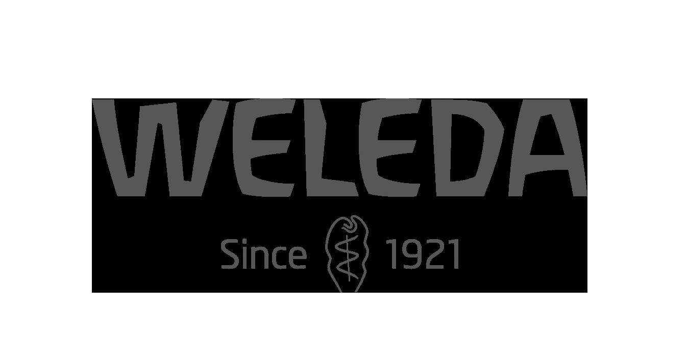 Wedela
